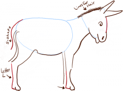 Drawn donkey mule