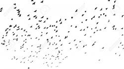 Flock Of Birds clipart vector art
