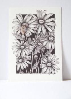 Drawn wildflower indie flower