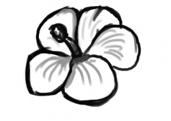 Drawn hibiscus easy