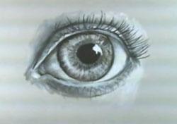 Drawn eyeball charcoal