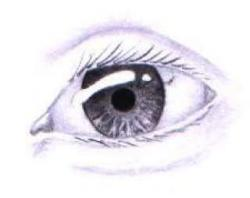 Drawn eyeball real eye