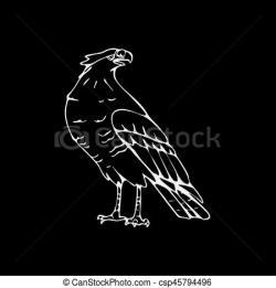 Drawn falcon vulture