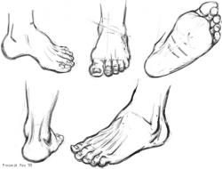 Drawn feet