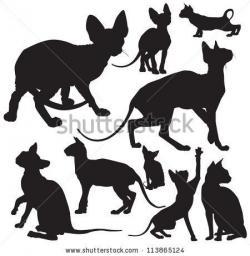 Sphynx Cat clipart shinx