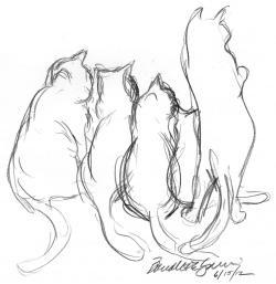 Drawn feline sketch