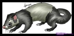 Drawn ferret famous