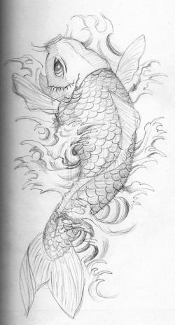 Drawn koi carp coy fish