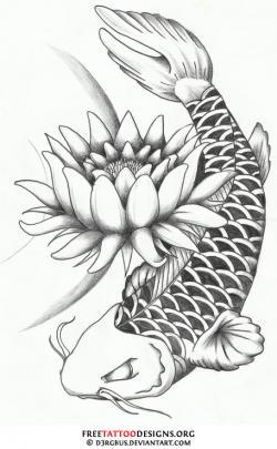 Drawn koi carp koi lotus