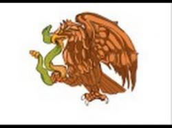 Drawn falcon mexico flag eagle