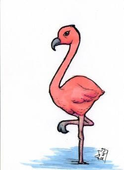 Drawn flamingo cute