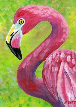 Drawn flamingo painted