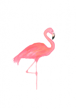 Drawn flamingo vintage