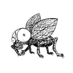 Drawn fly hand drawn