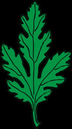 Chrysanthemum clipart cartoon