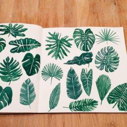 Drawn foliage cool leaf