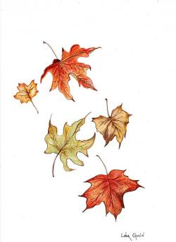 Drawn foliage falling leaf
