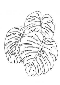Drawn leaves line drawing