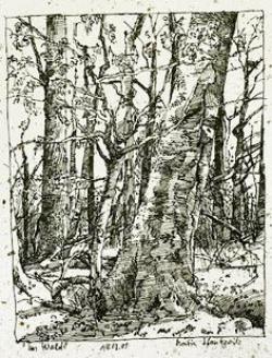 Drawn dead tree hill drawing