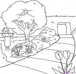 Drawn garden