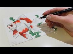 Drawn gold fish aquarium fish