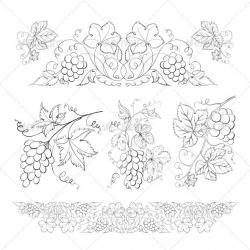 Drawn grapes line drawing