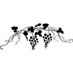 Drawn grapes silhouette