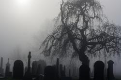 Drawn graveyard fog