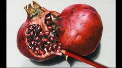 Drawn fruit pomegranate fruit