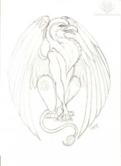 Drawn phoenix Drawn Griffin