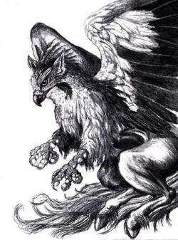 Drawn griffon mythology creature