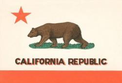 Drawn grizzly bear california republic