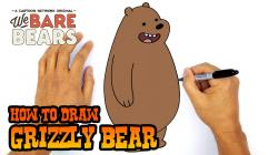 Drawn grizzly bear cartoon