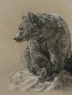 Drawn grizzly bear deviantart