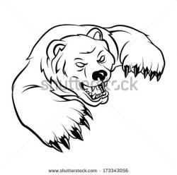 Drawn grizzly bear face