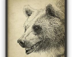 Drawn grizzly bear flower