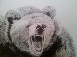 Drawn grizzly bear mad bear