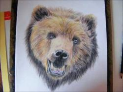 Drawn grizzly bear painting