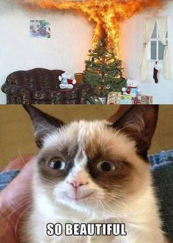Drawn grumpy cat