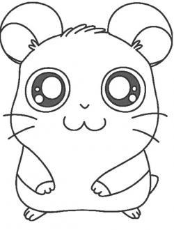 Drawn hamster coloring