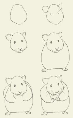 Drawn hamster simple