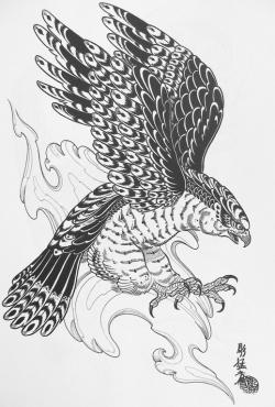 Drawn hawk