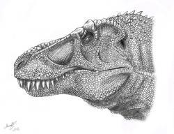 Drawn tyrannosaurus rex deviantart