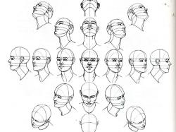 Drawn head perspective chart