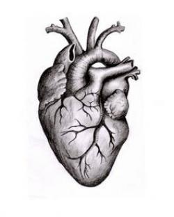 Drawn hearts art