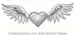 Drawn wings pencil drawing