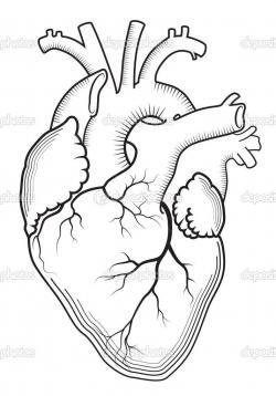 Drawn hearts