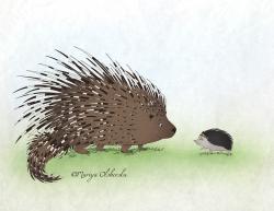 Drawn hedgehog porcupine