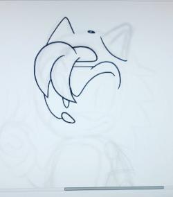 Drawn hedgehog rolled