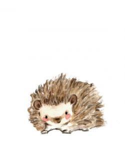 Drawn hedgehog rustic heart